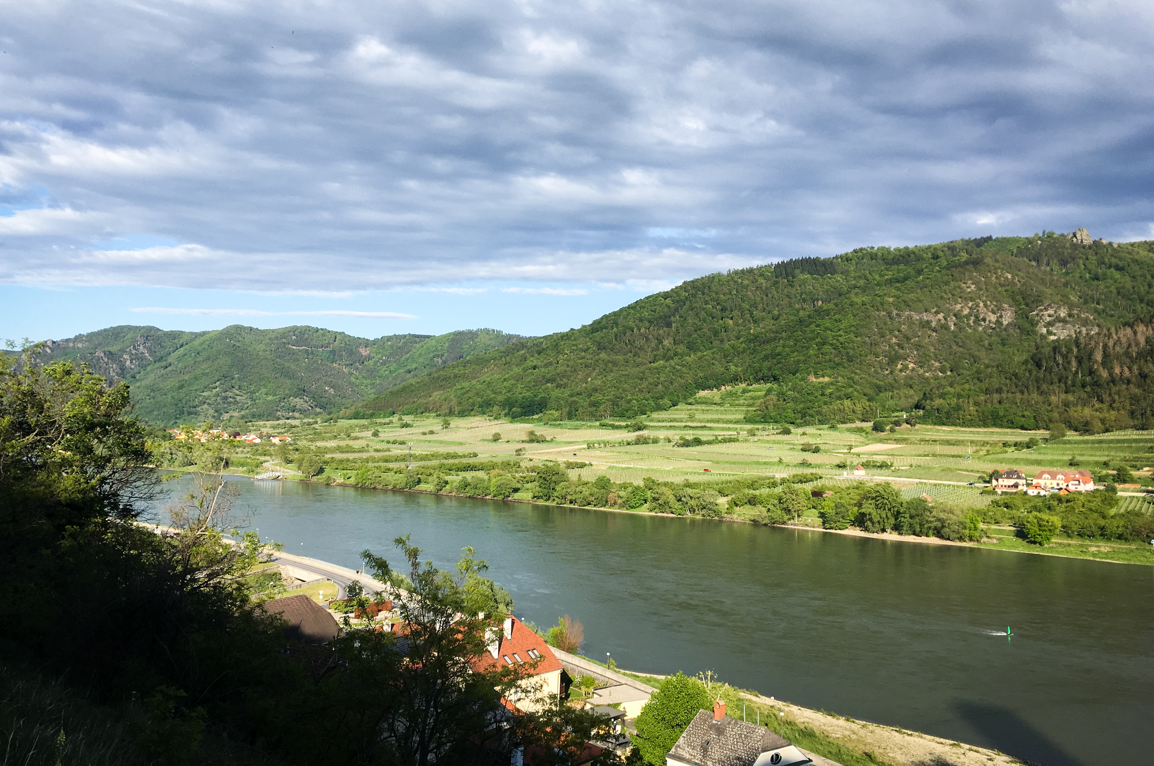 Donau nahe Schwallenbach